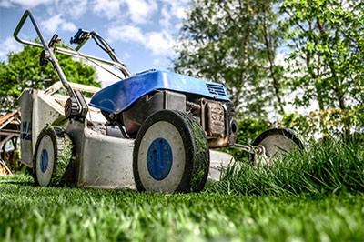 Panduan mesin pemotong rumput terbaik